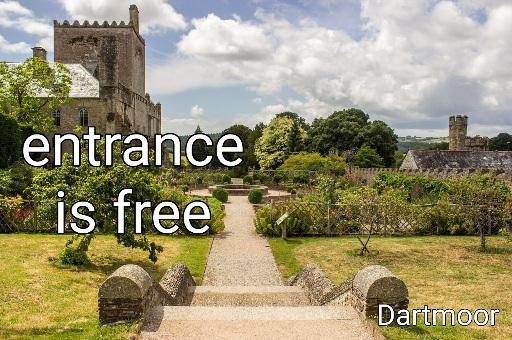 "5 významov slova ""free"""
