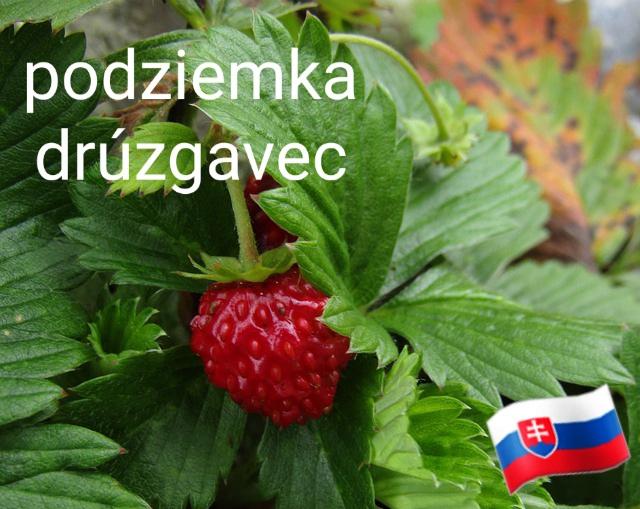 Stredoslovenské nárečia